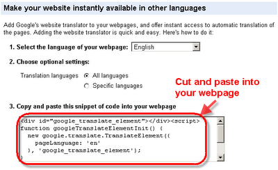 Image showing how to copy code from Google Translate for use on your site.