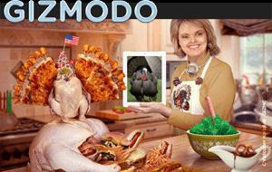 Picture of Gizmodo's article lead-in photo.