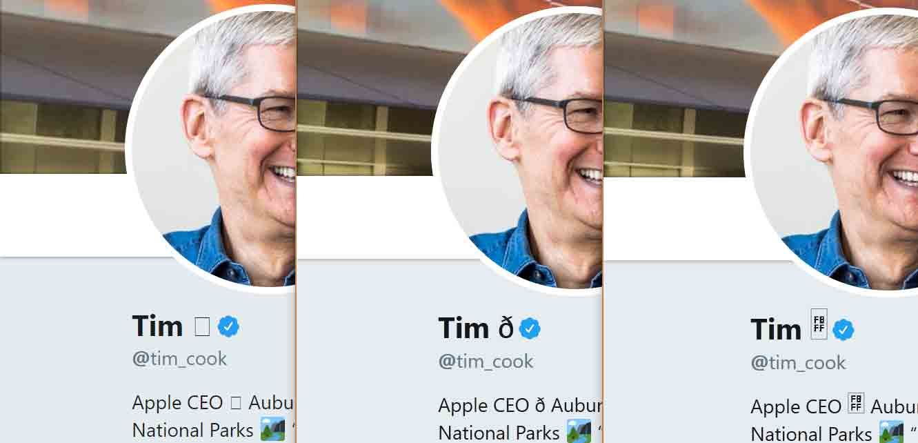 Tim Cook's Twitter bio with his name changed to be Tim Apple icon, except the Apple symbol does not render as an Apple symbol. In Chrome it is an empty square. In Edge it is a Latin small letter eth. In Firefox it is a square containing the letters FBFF.